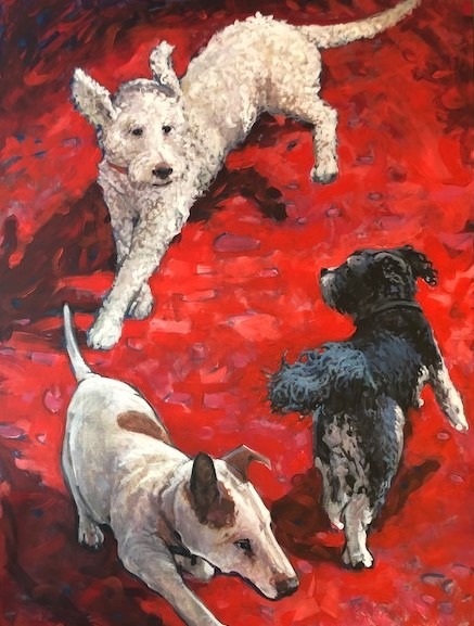 Multi dog portrait